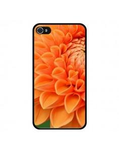 Coque Fleurs oranges flower pour iPhone 4 et 4S - R Delean