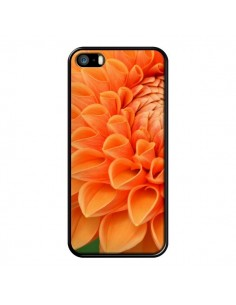 Coque Fleurs oranges flower pour iPhone 5 et 5S - R Delean