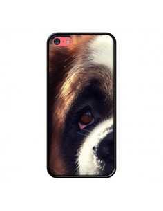Coque Saint Bernard Chien Dog pour iPhone 5C - R Delean