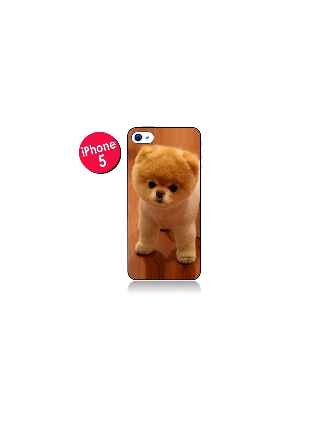 coque chien iphone 5