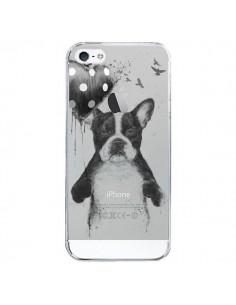 Coque iPhone 5/5S et SE Love Bulldog Dog Chien Transparente - Balazs Solti