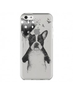 Coque Love Bulldog Dog Chien Transparente pour iPhone 5C - Balazs Solti