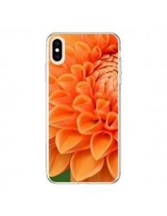 Coque iPhone XS Max Fleurs oranges flower - R Delean